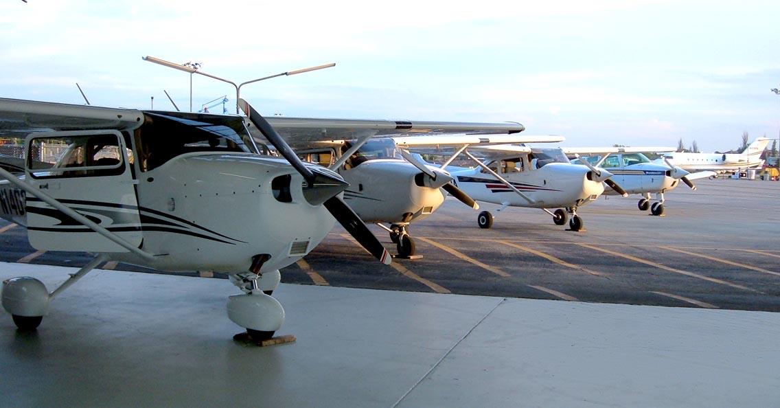 picnic-06-pwk-flyers-planes.jpg